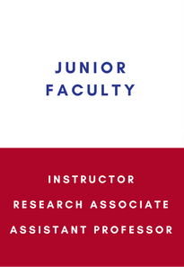 junior faculty instructor research associate assistant professor link