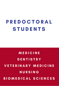 predoctoral students medicine dentistry veterinary medicine nursing biomedical sciences link